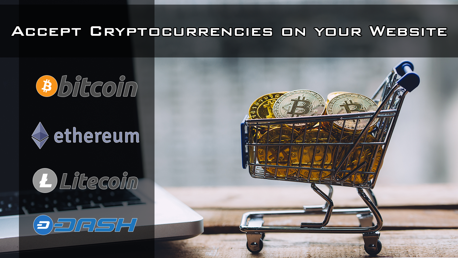 Accept Cryptocurrency on your website